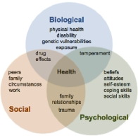 factors of Biopsychosocial model of mental illness
