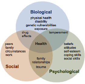 factors of Biopsychosocial model of mental illness